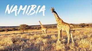 clipinc. - Namibia wild africa