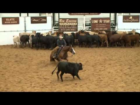 Battle for the 2014 NCHA Horse Of The Year Title