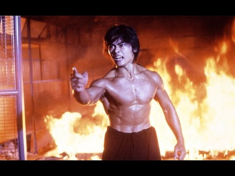 Top 5 ASIAN ACTION FILMS