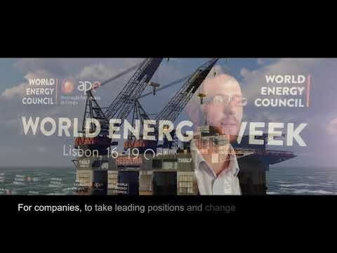 Snapshot 1_ Future Energy Leaders: our vision for the future 2016