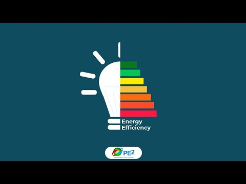 Mainstreaming Energy Efficiency as the Economy's First Fuel