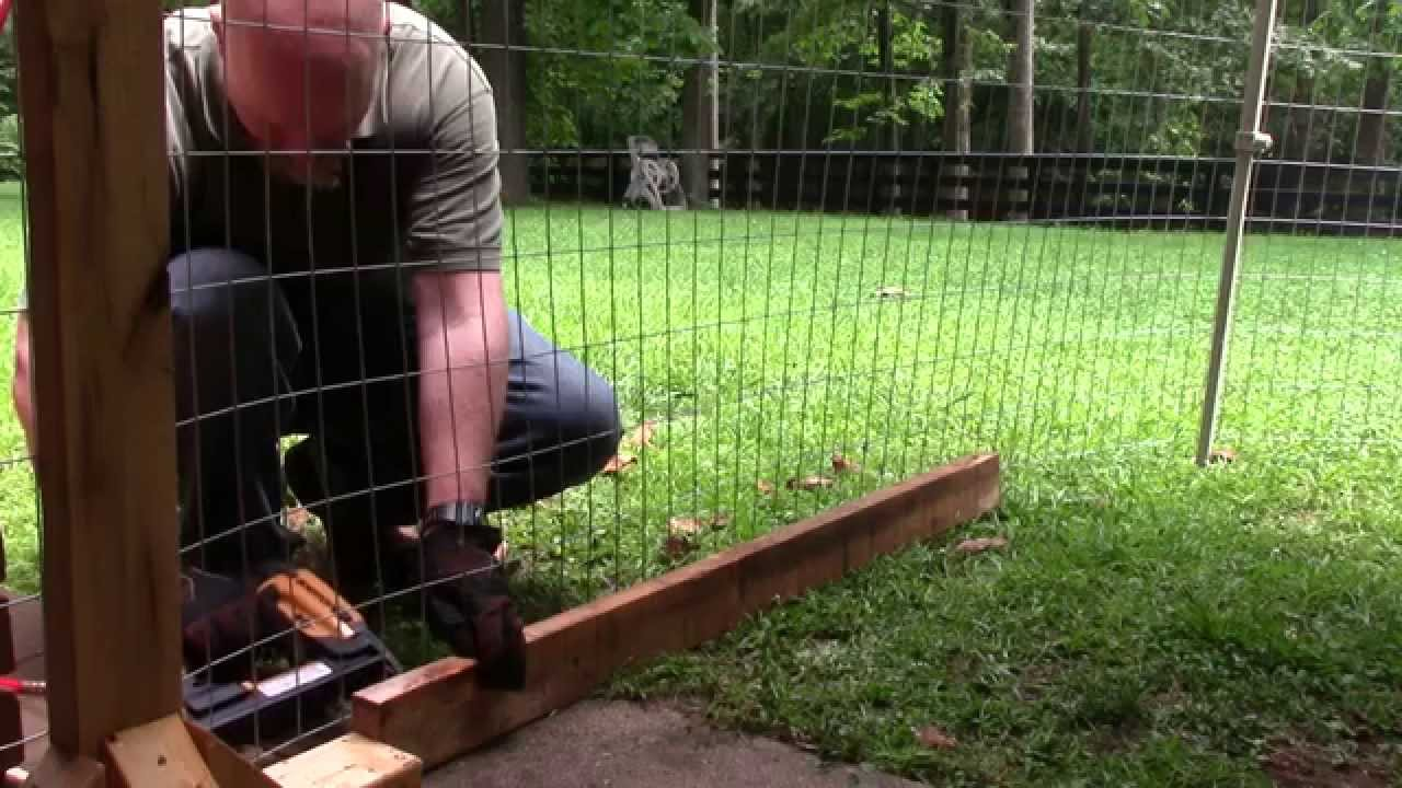 Make Dog Run Your Backyard
