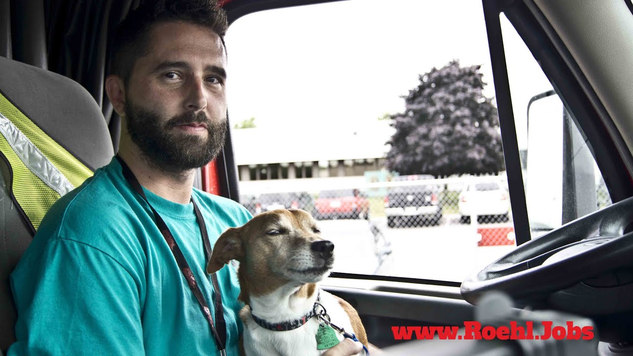 Pawsitively Roehl: Joey & Milo | Pet Friendly Truck Driving Jobs ...