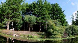 Long Island, Rice Lake Property for Sale