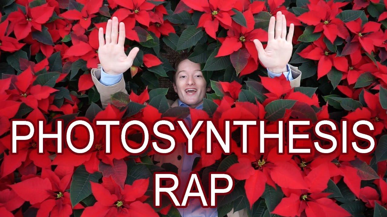 Photosynthesis Song Lyrics