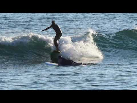 NSP Surfboards Kym Thompson Surfboard Review