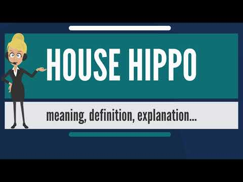 What Is HOUSE HIPPO? What Does HOUSE HIPPO Mean? HOUSE HIPPO Meaning, Definition & Explanation
