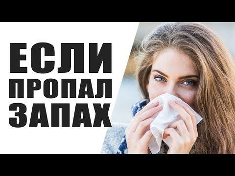 ❓ Что Делать Если Пропал Запах? Почему Пропал Запах и Вкус Еды При Простуде и Насморке