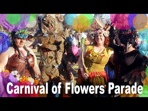 Carnival of Flowers Parade 2018 - Toowoomba Cosplayers