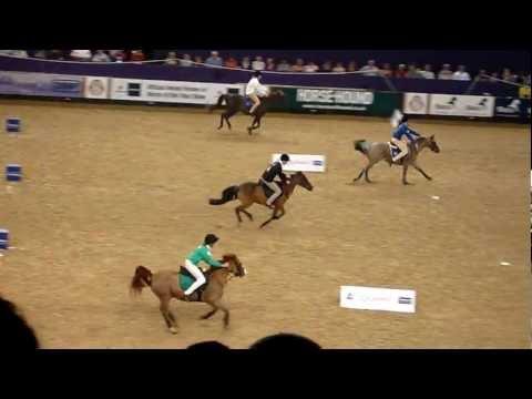Pony club mounted games hoys 2011