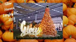 Glow Harvest, Langley B.C. - Great for Halloween & Fall