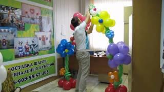 видео Бизнес-идея по продаже воздушных шаров, воздушные шарики как идея для бизнеса.