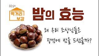 [윤홍일의 먹거리보감] - 오늘의 주제 '밤&#…