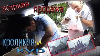 видео Купить мясо бройлера оптом в Москве