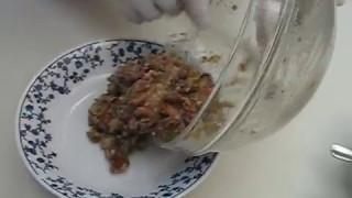 Ful Mudammas- Fava Beans- فول مدمس
