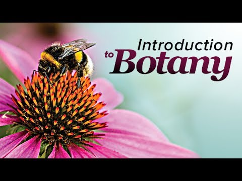 Plant Science: An Introduction to Botany   The Great Courses