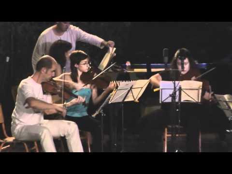 MUSIC VILLAGE/ΜΟΥΣΙΚΟ ΧΩΡΙΟ 2010 - chamber music 2