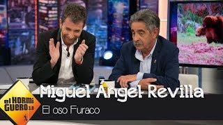 Miguel Ángel Revilla habla del famoso oso Furaco: