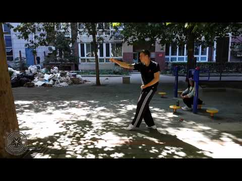 Hebei Xingyi Quan - Zuan Quan Basic Practice & Basic Applications
