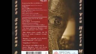 The Desert Sessions - Vol. 9 & 10