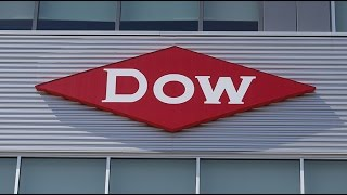 Trump repaid campaign debt to Dow Chemical 'almost immediately' – Organic advocate