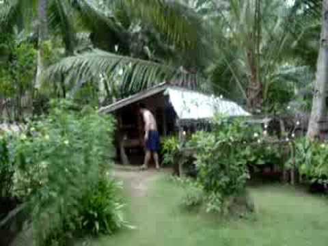 sikatuna, bohol, vacation 2008