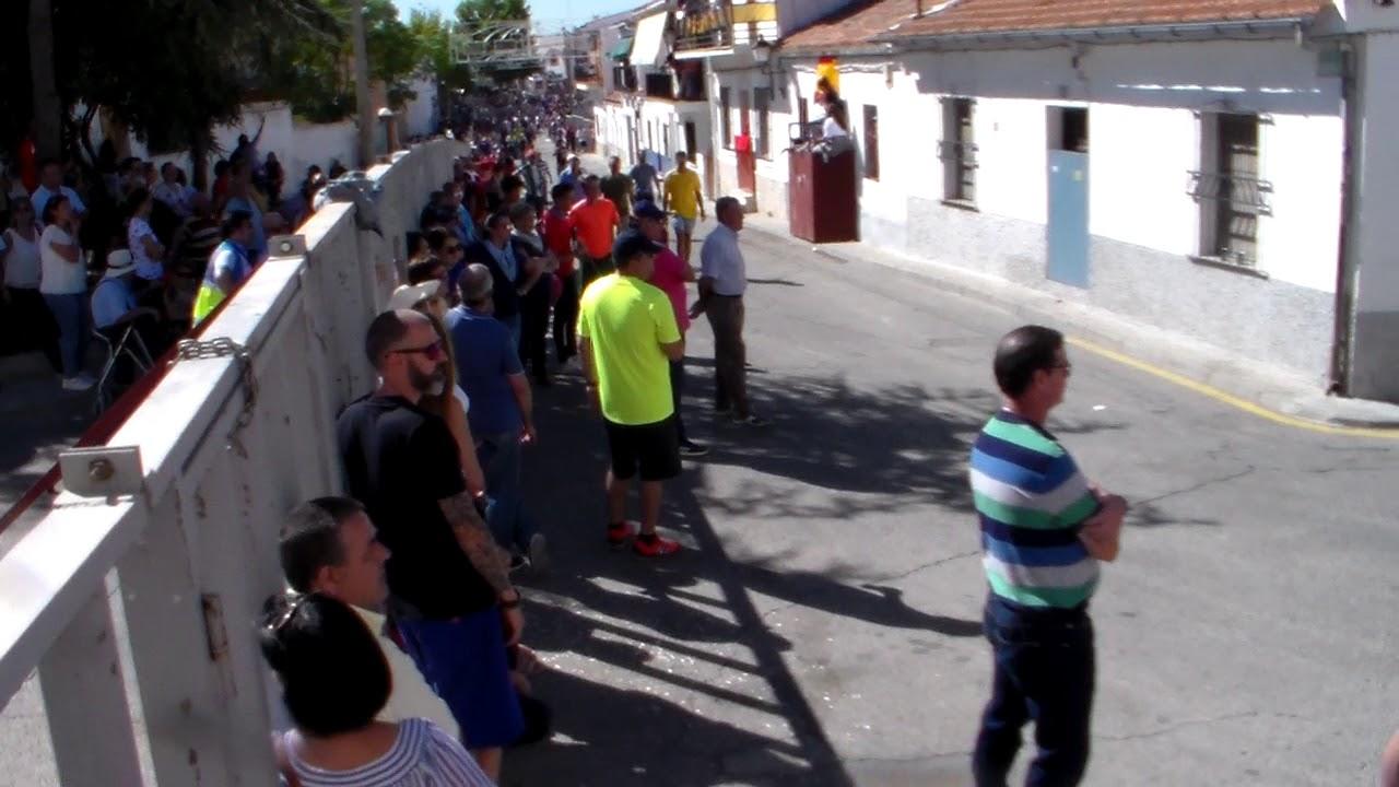 Torres De La Alameda Encierros 3 10 2017 1 Youtube