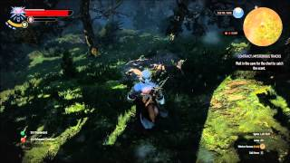 The Witcher 3: Wild Hunt - Witcher Contract: Mysterious Tracks