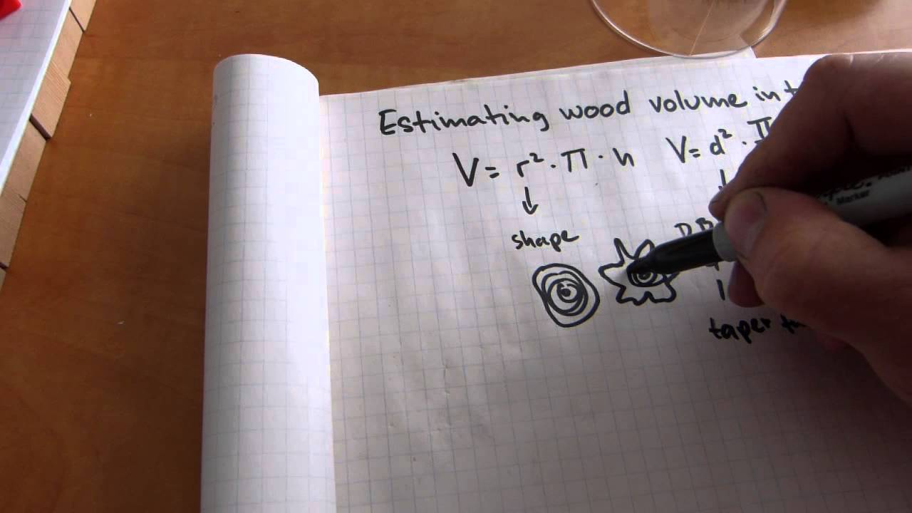 Estimate wood volume in trees logs youtube for How to calculate board feet in a tree