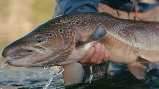 Respect Your River - Presented By LOOP TACKLE