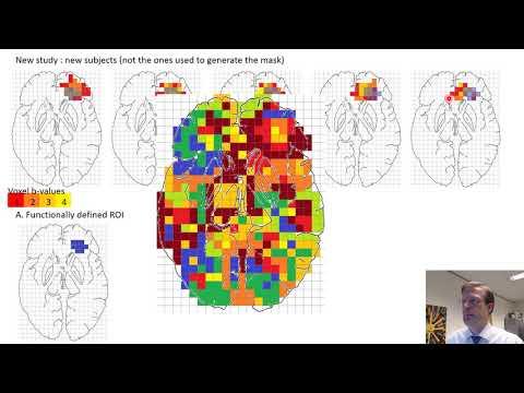 GROUP ANALYSES   02 Region of interest analysis