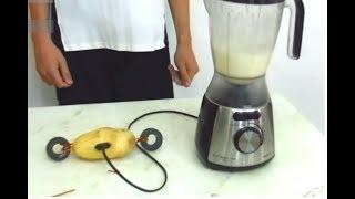 Faltou Luz em Casa?  Pluga na  Batata --- Free Energy - Fake - Turn on at Potato