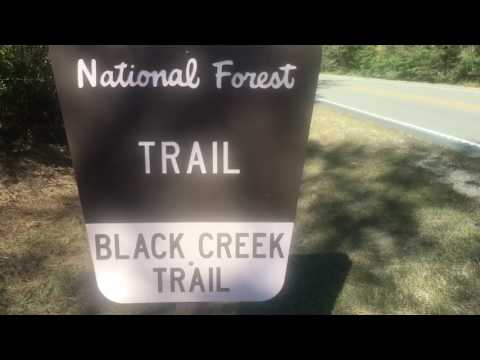 Thruhike AT Black Creek Trail Mississippi Wilderness Pt 2 HD version