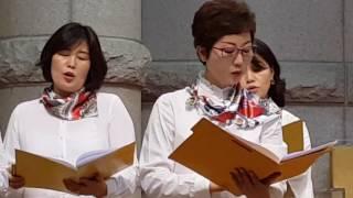 2017.05.31신안교회수요예배찬양(저학년부교사특송)