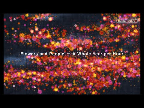 Flowers and People − A Whole Year per Hour
