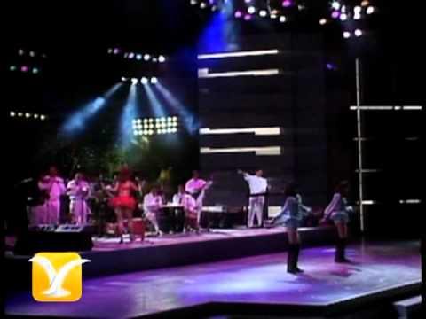 Banda Blanca, Fiesta, Festival de Viña 1992
