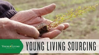 Seed to Seal: The Young Living Sourcing Standards