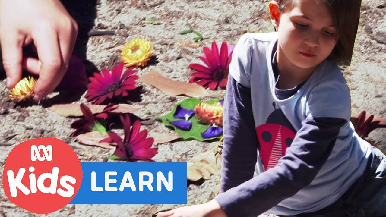 Making Shapes With Flowers | Go Wild For Maths Full Episode | ABC Kids