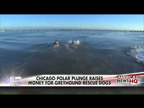 Chicago polar plunge for a great cause