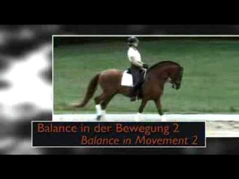 Balance in Movement 2 - Riding with light aids