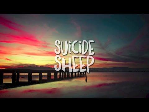 Liza Flume - What We Called Love (MÖWE Remix)