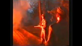LAS | Pożar lasu w Kuźni Raciborskiej - 25 lat później. Reportaż DZ