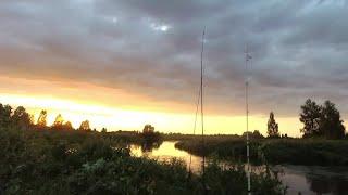 Отчёт с двух рыбалок на сома Река Свислочь Рыбалка в Беларуси