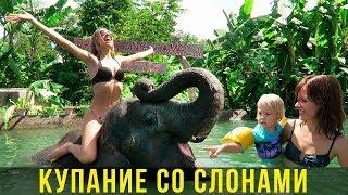 Купание со слонами на Пхукете - Вика в восторге, рекомендуем детям, Тайланд