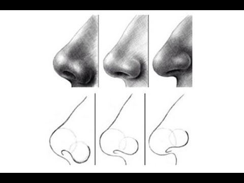 how to draw nose for beginners 2 - YouTube