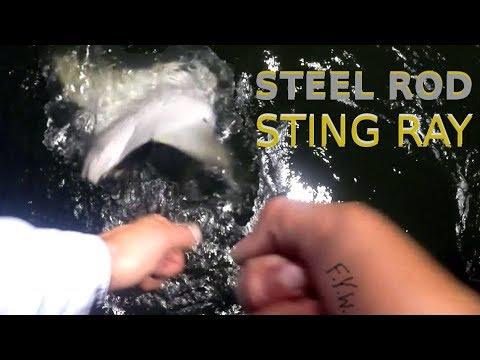 The STEEL ROD STINGRAY - Pier Fishing SOUTH BEND Style!!! - FISH YOUR WAY