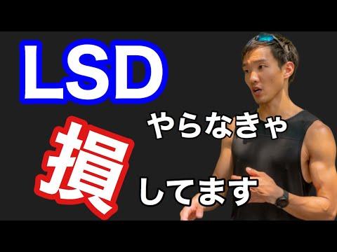 【マラソントレーニング】LSDのすごい効果とやり方