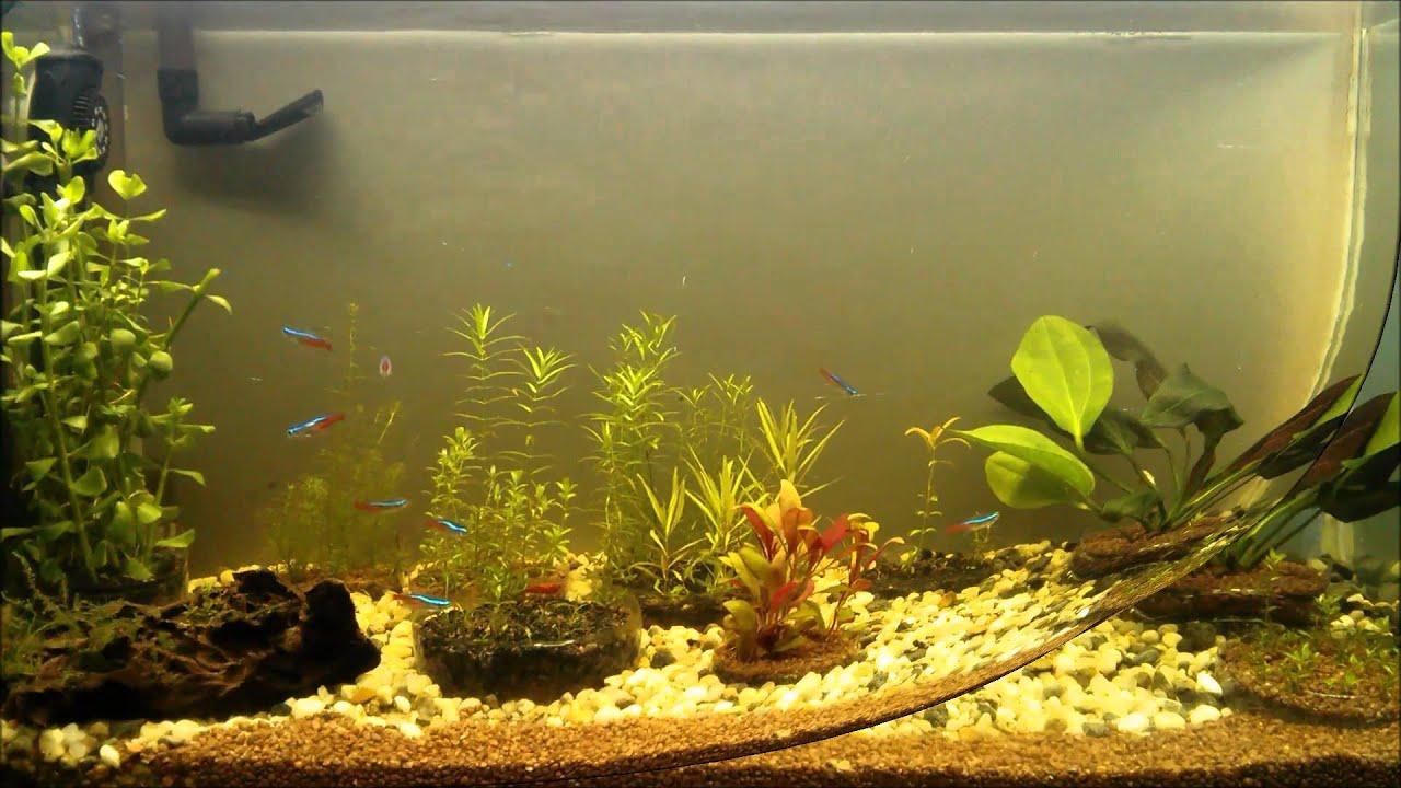 Aquarium fish tank mist maker -  Mist Frosted Vinyl Film Aquarium Background