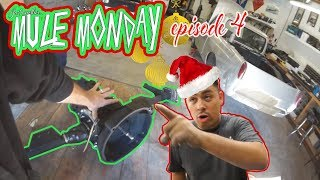 IT'S A MERRY MULE CHRISTMAS SPECIAL! - mule monday episode 4