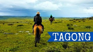 Tagong, Kham region, Sichuan Province, China   Horse Riding Travel Video 2016   TravelGretl Full HD